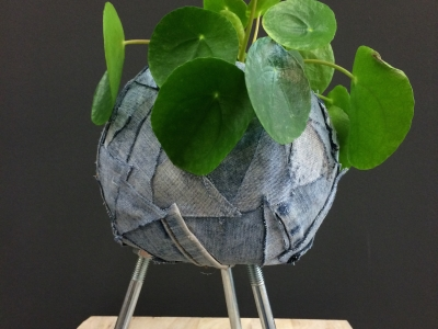 Denim Drift plant design - Fun