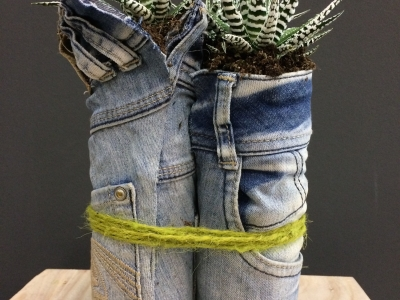 Denim Drift planten trio - commercieel idee