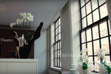 Kleurrijke Witte Woonkamer : Een kleurrijke woonkamer met orchideeën flower factor