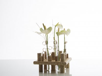 Fris Anthurium design met OSB