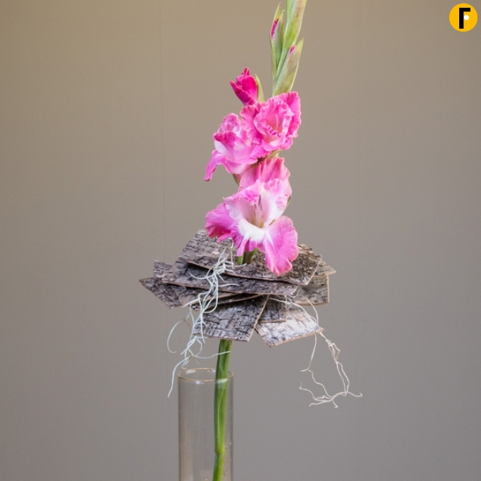 single flower design Gladiola Pim van den Akker