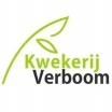Kwekerij Verboom