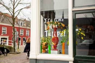Tulpenpromotie Tulpentijd 2020 I It's time for tulips! | Flower Factor